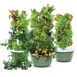 Tower Garden JuicePlus